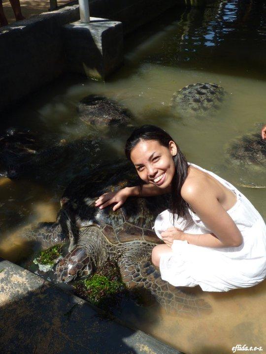 Turtle Island in Bali, Indonesia.