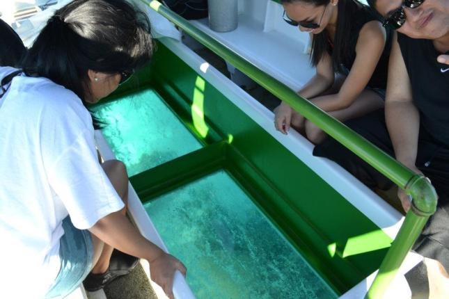 Glass Bottom Boat Ride in Panglao, Bohol, Philippines