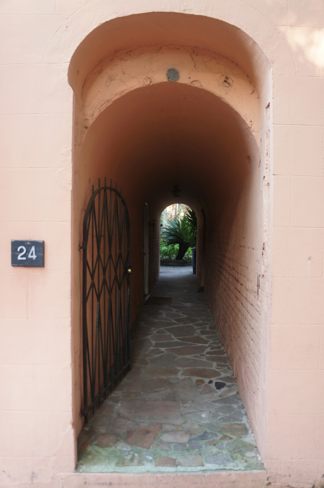 a captivating alley in Charleston