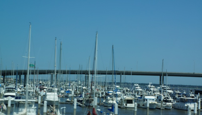 the marina in Charleston, South Carolina