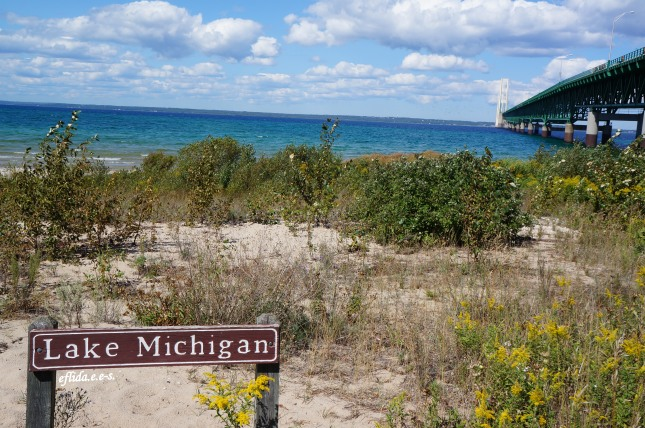 Lake Michigan with Mackinac Bridge as the background.