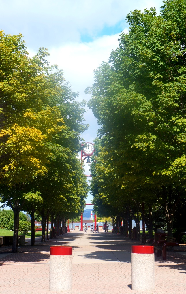 Petoskey City Park is situated right beside Petoskey Marina in Michigan.