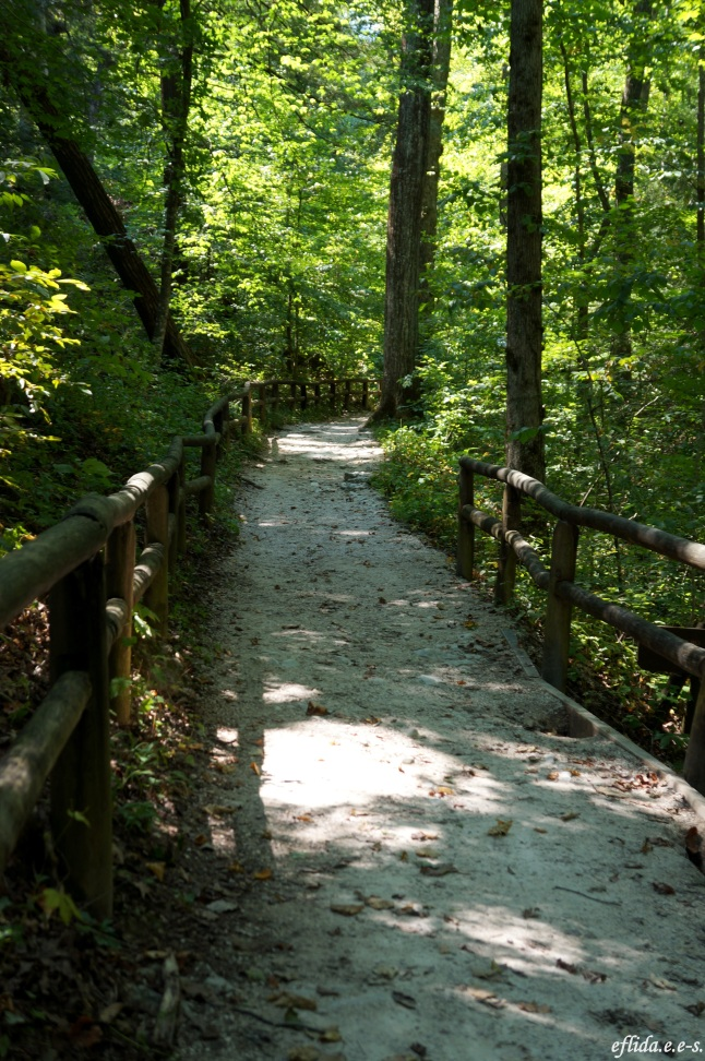 One of the hiking trails at Natural Bridge State Park in Kentucky, USA.
