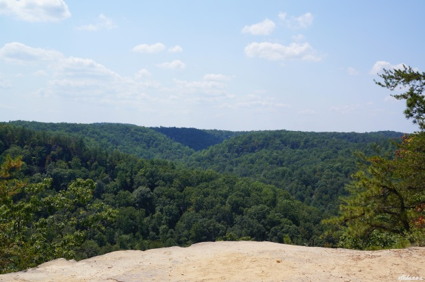 East view while standing on top of the natural bridge in Kentucky, USA.