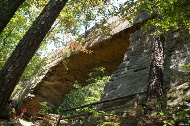 The Natural Bridge in Kentucky, USA was formed by a natural process of weathering over millions of years. This bridge is a natural sandstone arch that spans 78 ft or 24 meters and is 65 ft or 20 m high.