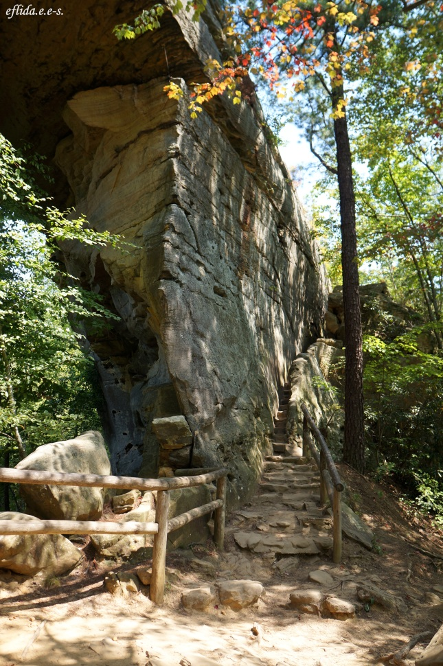 The steps leading to the top of the natural bridge in Kentucky, USA.
