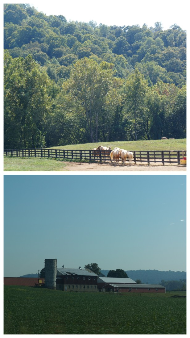 Horse farm and barn house in Kentucky, USA.
