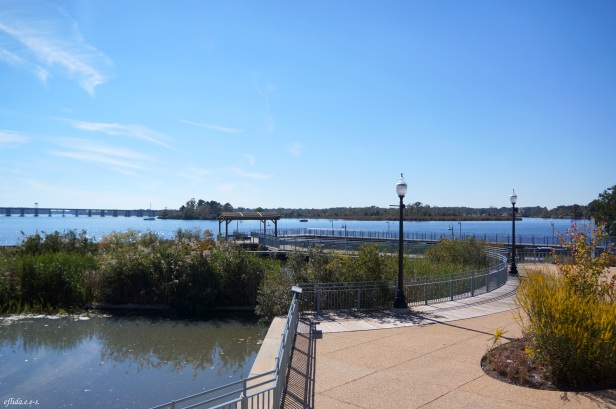 View of Trent River from North Carolina History Center.