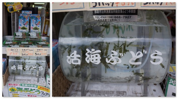 Cultured grape seaweed or Umi-budo in one of the shops in Kokusaidori.