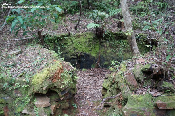 One of the charcoal pits spotted along the 1.5 kilometer trail to Hiji Falls in the northern part of Okinawa, Japan.