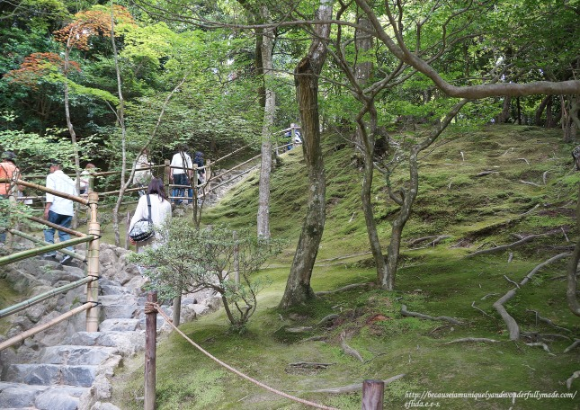 The climb on a small hill for an elevated view of the Ginkaku-ji in Kyoto Japan. Moss covers some parts of the area.
