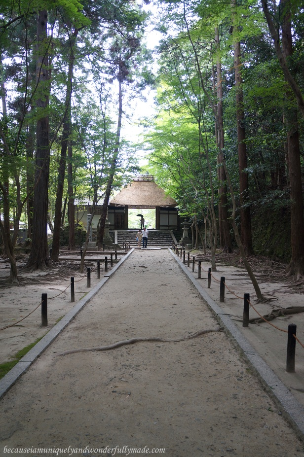 The famous entry to Honen-in Temple in Kyoto, Japan is a thatched gate.
