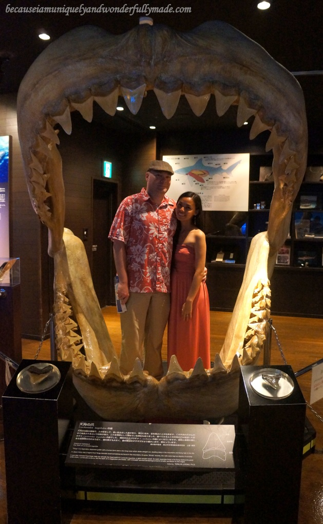 The reconstructed model of the jaw of an extinct 16-meter long shark on display at Churaumi Aquarium in Motobu District in Okinawa, Japan.
