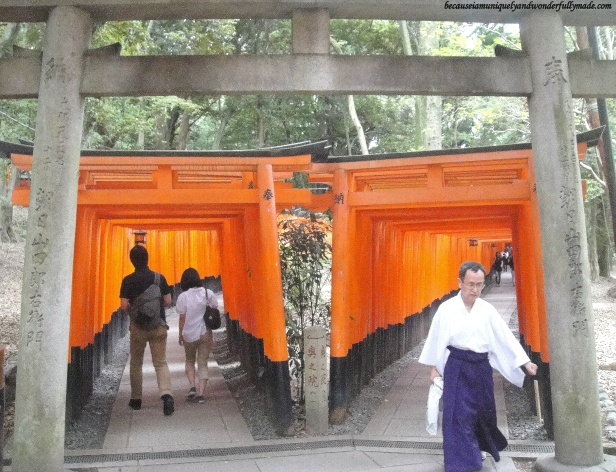 "The Senbon Torii 千本鳥居 which means ""thousands of torii gates"" starts with two dense, parallel row of gates that then line the pathway up to the top of Mt.Inari in Kyoto, Japan."