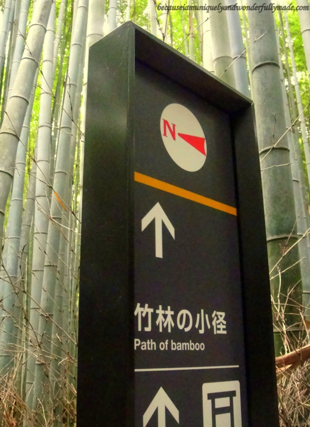 The Path of Bamboo : Sagano Bamboo Forest 嵯峨野竹林 in Arashiyama District in Kyoto, Japan.
