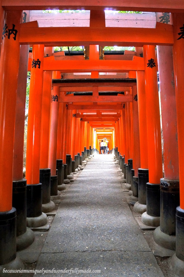 "The Senbon Torii 千本鳥居 which means ""thousands of torii gates"" at Fushimi Inari Taisha in Kyoto, Japan"