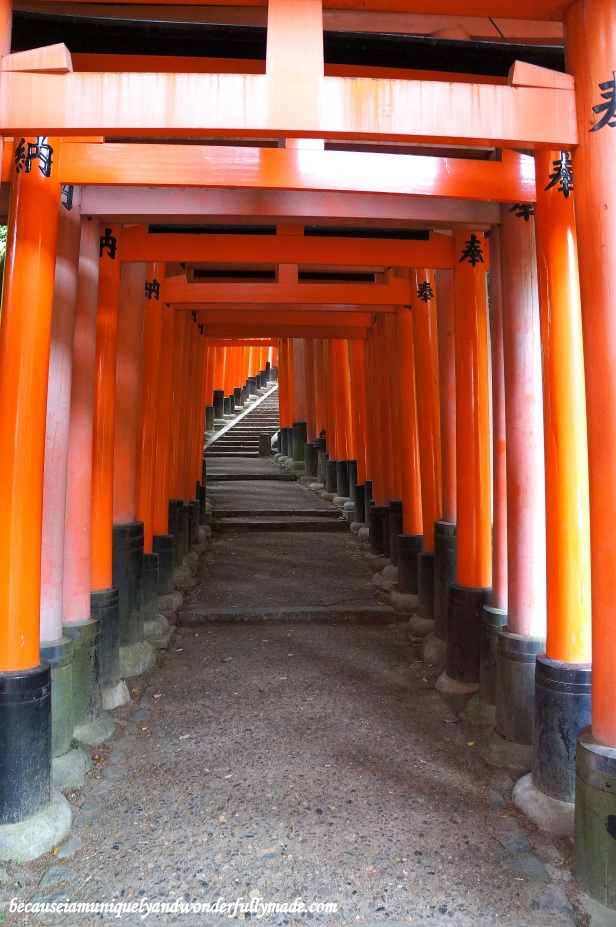 "The Senbon Torii 千本鳥居 which means ""thousands of torii gates"" at Fushimi Inari Taisha in Kyoto, Japan."