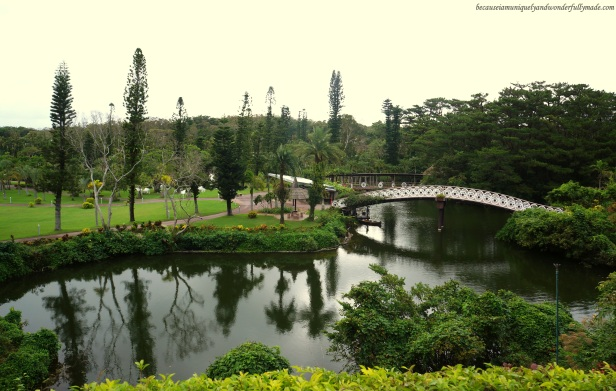 The picturesque view overlooking a pond and a bridge at the Water Park in Southeast Botanical Garden in Okinawa City, Okinawa, Japan. (東南植物楽園 Tōnan Shokubutsu Rakuen)