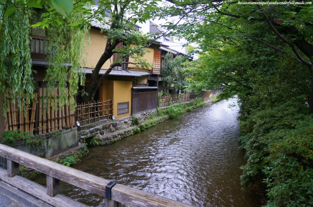 Shirakawa River 白川 at Gion District in Kyoto, Japan.