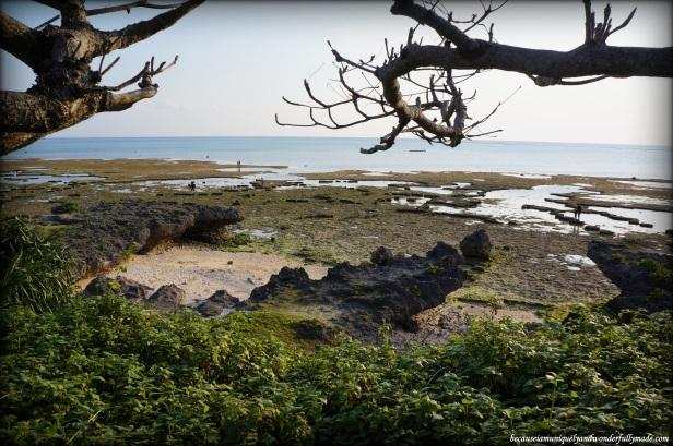 Cape Zanpa shore on a low tide.