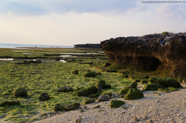 Another view of Cape Zanpa shore on a low tide.
