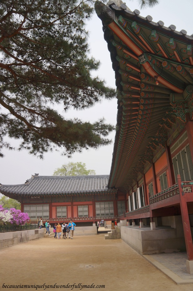 A beautifully detailed roof at Gyeongbokgung Palace 경복궁 in Seoul, South Korea.