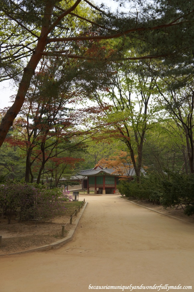 A solemn walk around Jongmyo Shrine 종묘대제 in Seoul, South Korea.
