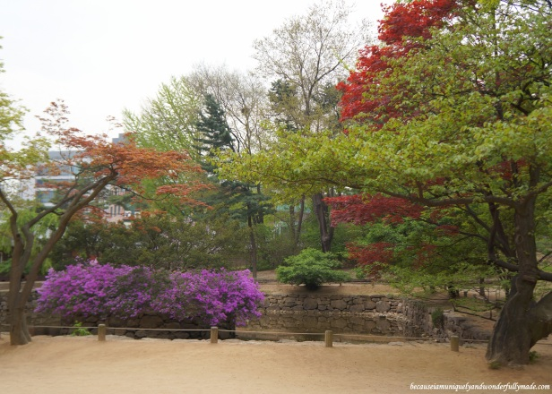 The pond on the left side of the entrance of Jongmyo Shrine 종묘대제 in Seoul, South Korea.
