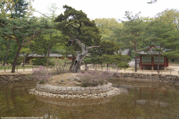 The pond on the right side of the entrance of Jongmyo Shrine 종묘대제 in Seoul, South Korea.
