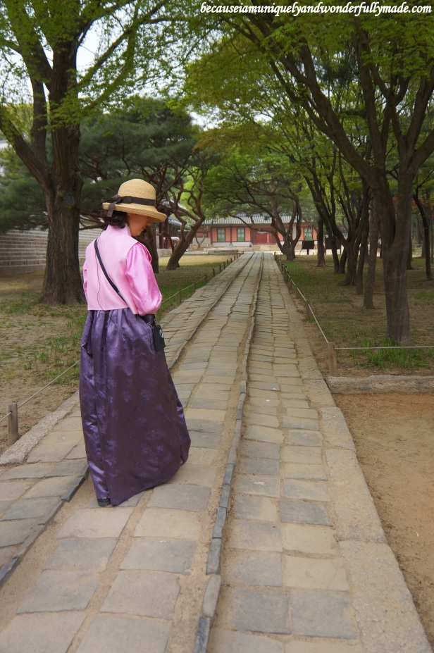 Our tour guide showing us certain paths that are only reserved for the king, the crown prince and the spirits at Jongmyo Shrine 종묘대제 in Seoul, South Korea.