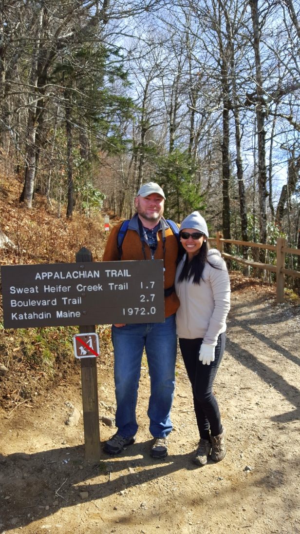 The Appalachian Trail in the Great Smoky Mountain.
