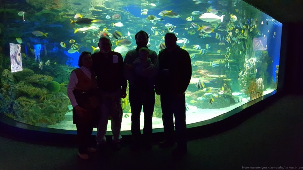 At Ripley's Aquarium of the Smokies in Gatlinburg, Tennessee.