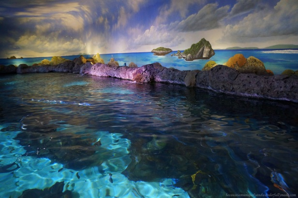 The Shark Lagoon of Ripley's Aquarium of the Smokies. The aquarium is one of the most popular tourist spots in Gatlinburg, Tennessee.