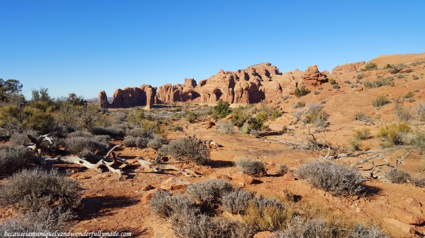 The Double Arch and Parade of Elephants from a distance in Arches National Park near Moab Utah, USA.