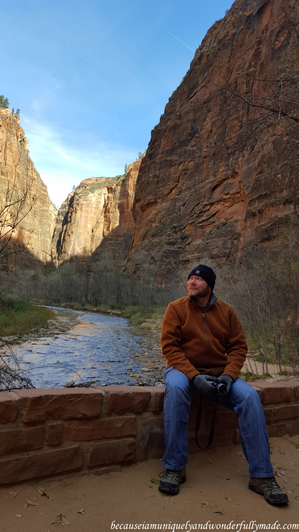 The sun's rays were starting to hit the sandstone cliffs on our Riverside Walk at Zion National Park in Utah.