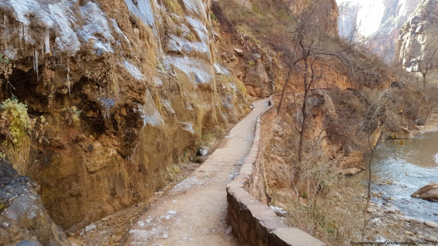 The Riverside Walk at Zion National Park in Utah was only two miles but the ice sheets formed on the wall cliffs along the trail made it extra interesting.