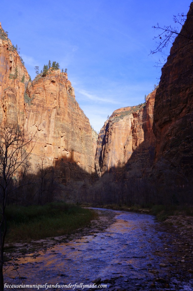 Riverside Walk, also known as the Gateway to the Narrows, at Zion National Park in Utah.