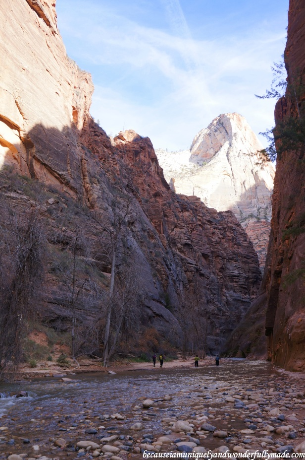Riverside Walk, also known as the Gateway to the Narrows, at Zion National Park in Utah. Up ahead is the famous Narrows where these tourists are brave and all geared up to fight the cold winter water which could be waist high.