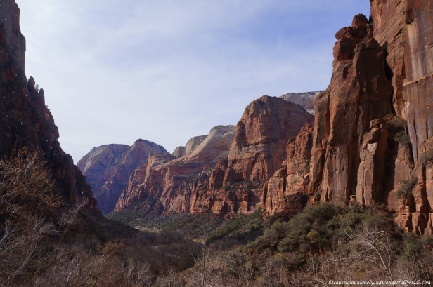 View of the canyon overlooking from the Weeping Rock at Zion National Park in Utah.