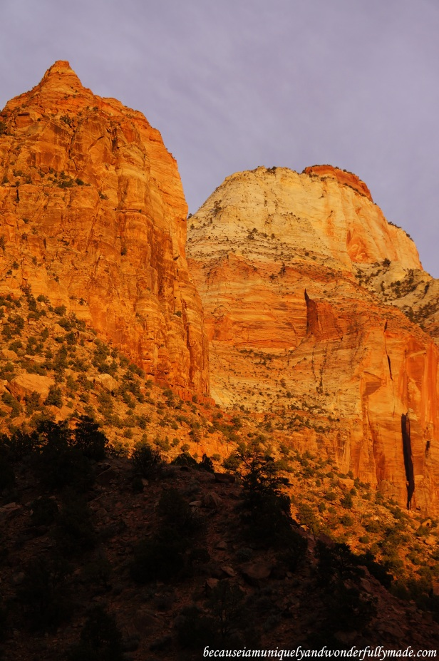 The landscape at Zion National Park in Springdale, Utah unfolded from reddish orange to a glorious amber gold during sunset.