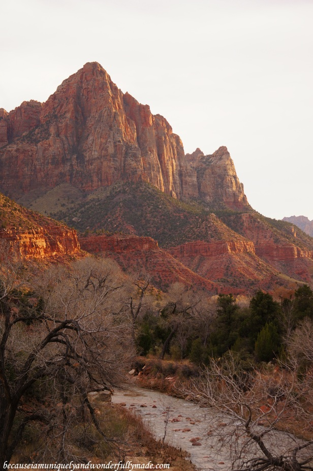 The view of the Watchman from the Canyon Junction Bridge at Zion National Park in Springdale, Utah.
