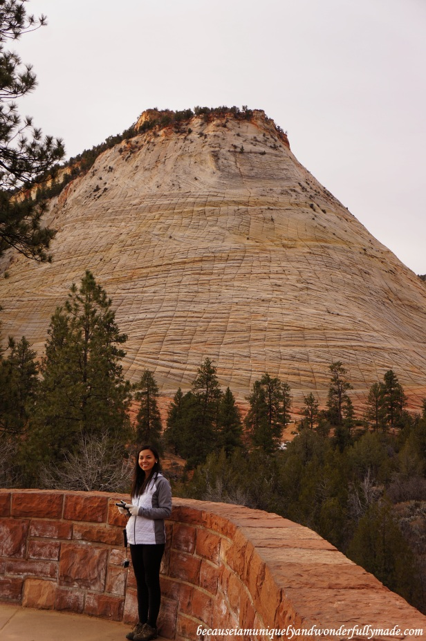 Stopped at Checkerboard Mesa on our way heading out of Zion National Park in Utah.