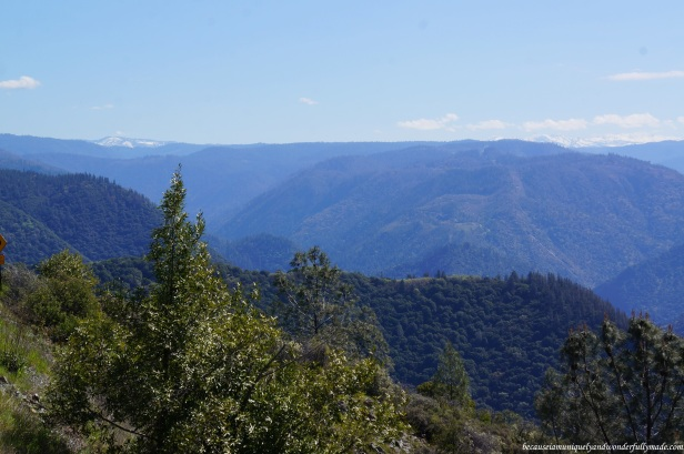 Breathtaking views as we drove towards Placer County Big Trees Grove via Mosquito Ridge Road in Foresthill.