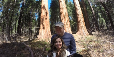 Placer County Sequoia Grove
