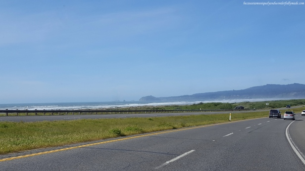 Our first sight of the Pacific Ocean as we were driving on US Highway 101 on our way to Redwood National Park.