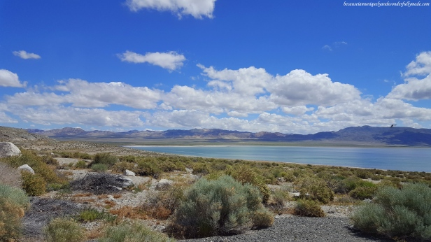 Walker Lake in Nevada is a terminal lake, meaning it has no natural outlet, except absorption and evaporation.