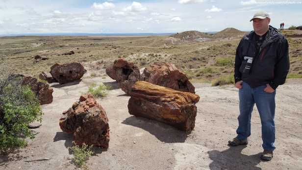 Visitors can get up close and personal to the fossilized giant logs at Giant Logs trail in Petrified Forest National Park in Arizona.