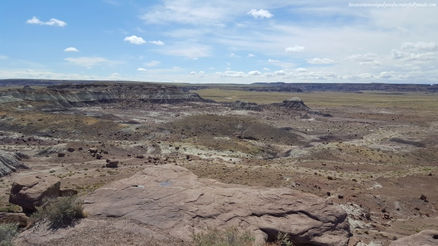 Overlooking the Jasper Forest at Petrified Forest National Park in Arizona.