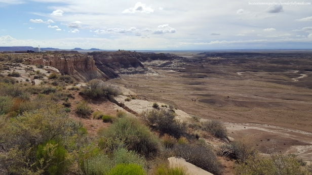The Blue Mesa trail is one mile loop.