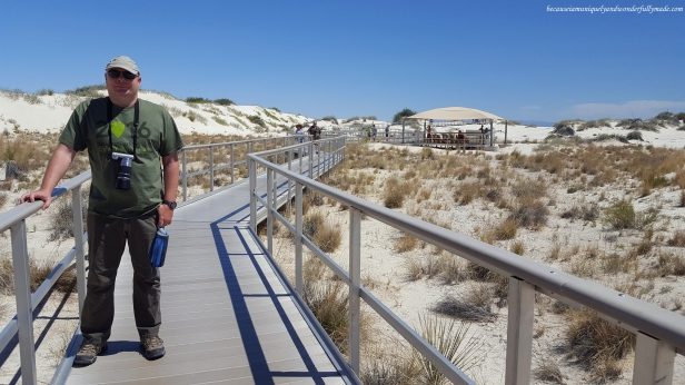 The Interdune Boardwalk is a half mile round trip trail located just along the Dunes Drive. It is a self-guided walk with 10 outdoor exhibits along the boardwalk.
